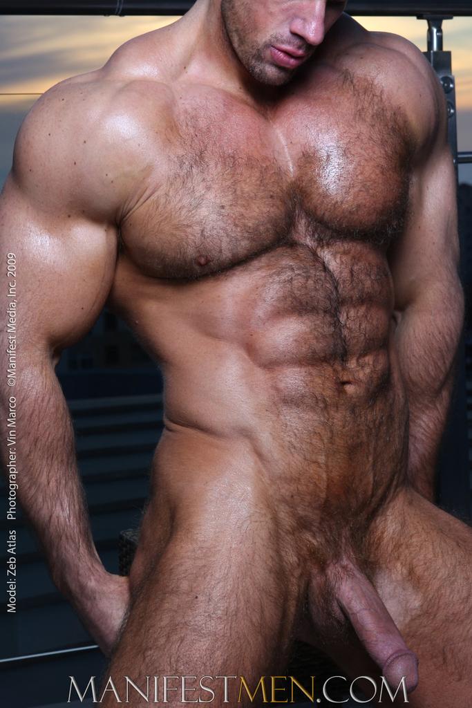 gay muscular tgp